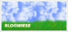 blogwiese5