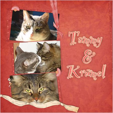 Scrapbooking - Tammy & Krümel