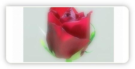 Bild bearbeitet mit Picnik.com