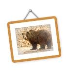 Bilder vom Augsburger Zoo