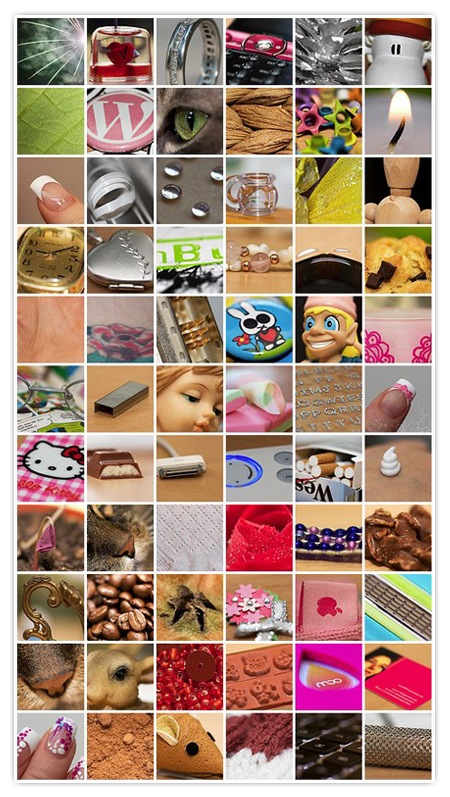 66 Bilder an 66 Tagen - Projekt365