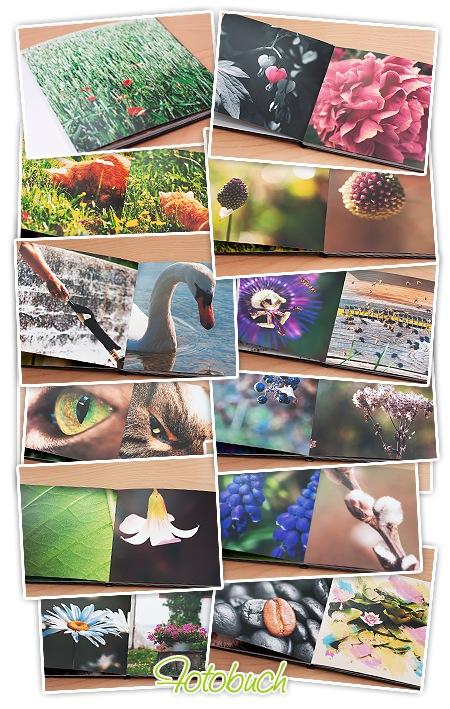 Fotobuch von FujiDirekt - einzelne Seiten