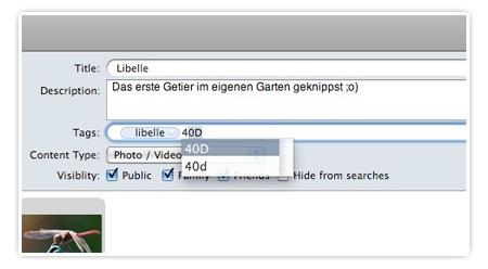Flickery - Screenshot - Autovervollständigung - Tags