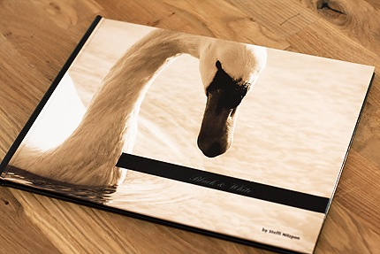 titelseite fotobuch Produkttest   Fotobuch von Photobox