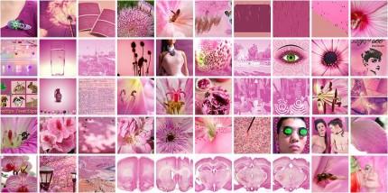 Bilder von Flickr sortiert nach Farbe